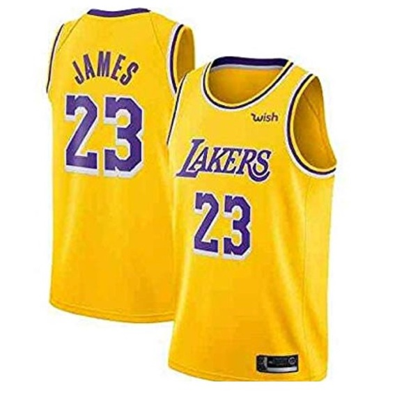 quality design 0894f df506 Labron Los Angeles Lakers Jersey Lebron James